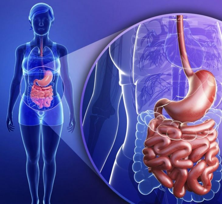 Как выглядит хронический гастрит желудка фото