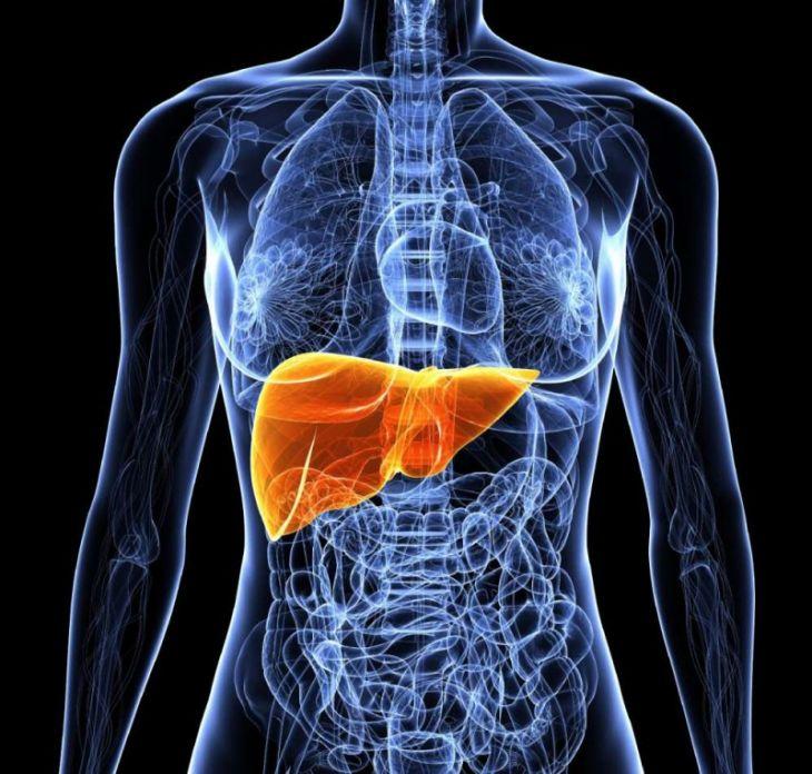 Ожирение печени лечение, симптомы, диета, причины