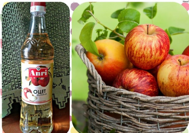 Яблочный Уксус В Диете Дюкана. Диета с яблочным уксусом – миф или реальность?