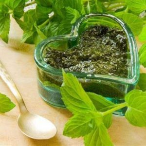 Рецепты с мятой — полезные свойства и варианты применения мяты в народной медицине (115 фото)